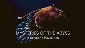 Mysteries of the Abyss