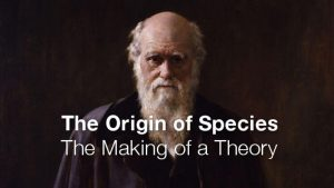 The Origin of Species: The Making of a Theory