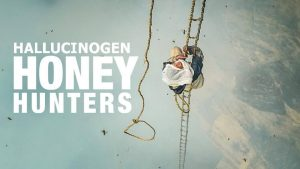 Hallucinogen Honey Hunters