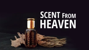 Scent From Heaven: Oud Perfume