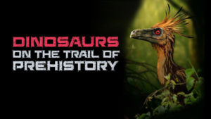 Dinosaurs: On The Trail Of Prehistory