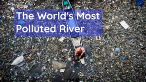 The World's Most Polluted River