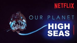 Our Planet: High Seas