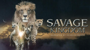 Savage Kingdom: Dawn of Darkness