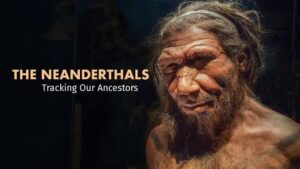 The Neanderthals: Tracking Our Ancestors